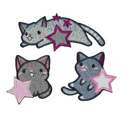 kotki z gwiazdkami